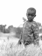 AfricanImpact volunteer platform review