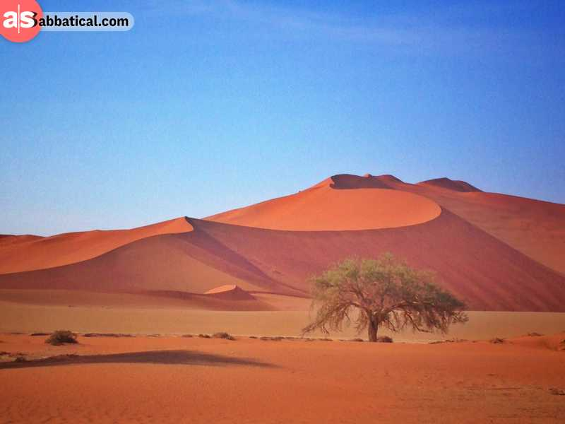 Sossusvlei Dune in the Great Namib Dessert in Namibia
