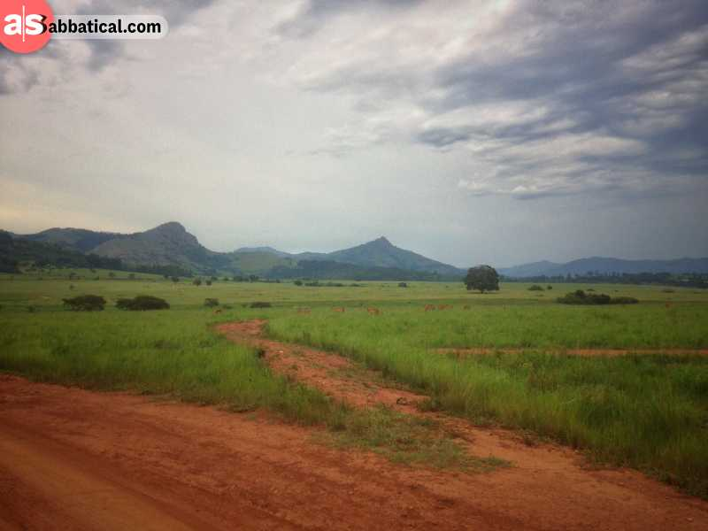 Mkhaya Game Reserve in Swaziland, Africa
