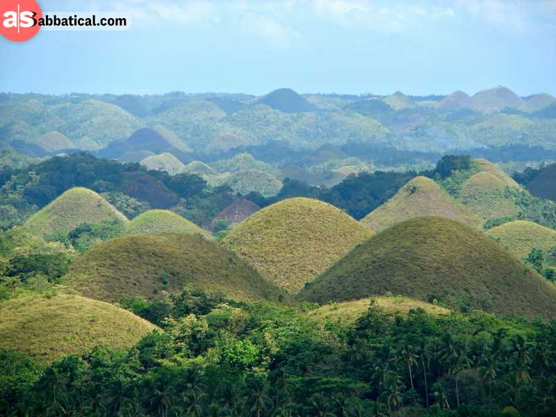 Bohol is home to one of the most known attractions of this country, the Chocolate Hills.