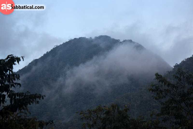 Bukit Pagon is the tallest mountain in Brunei; it's not a popular tourist destination, so it's full of untouched nature!