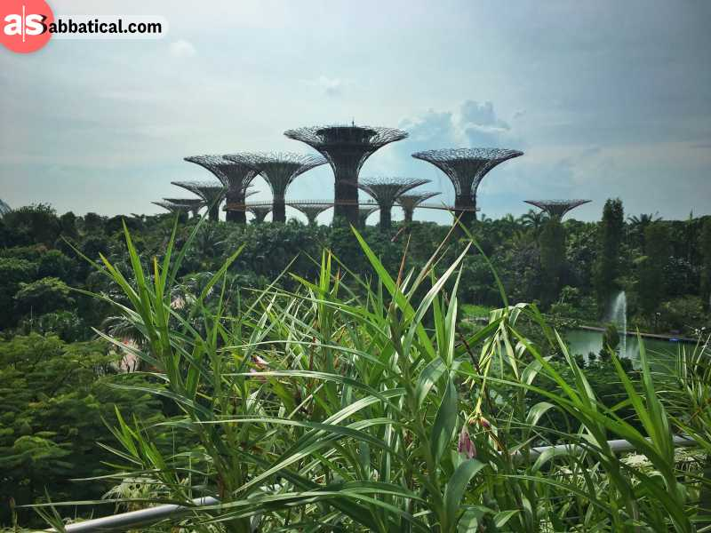Gardens By The Bay is one of the most futuristic attractions in Singapore.