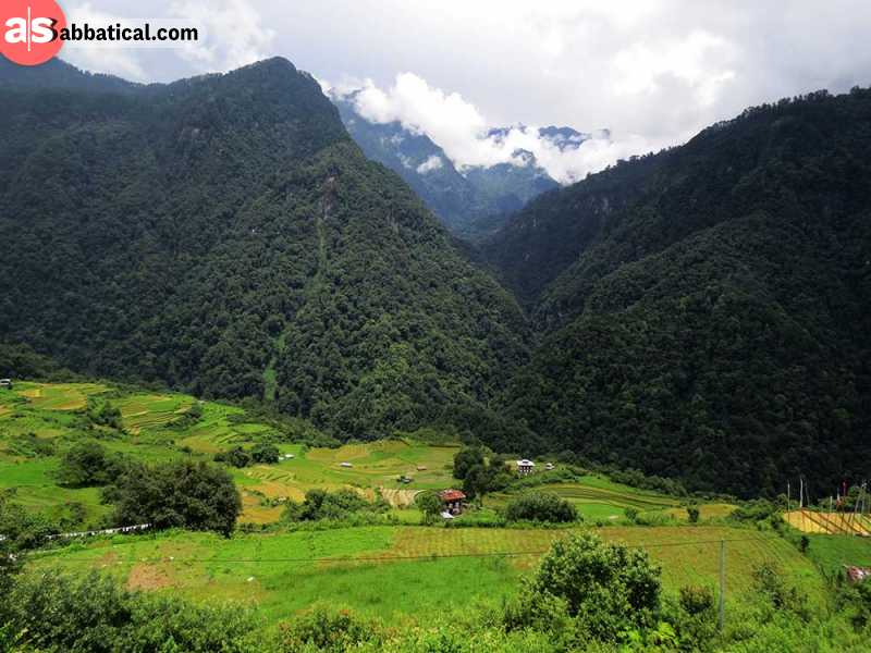 Jigme Dorji is the largest national park in Bhutan and is a true natural wonder.