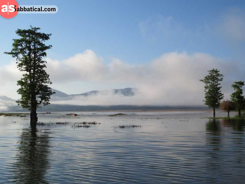 Lake Iralalaro is the largest lake in Timor Leste. Beware, there is a large crocodile population inhabiting this lake!