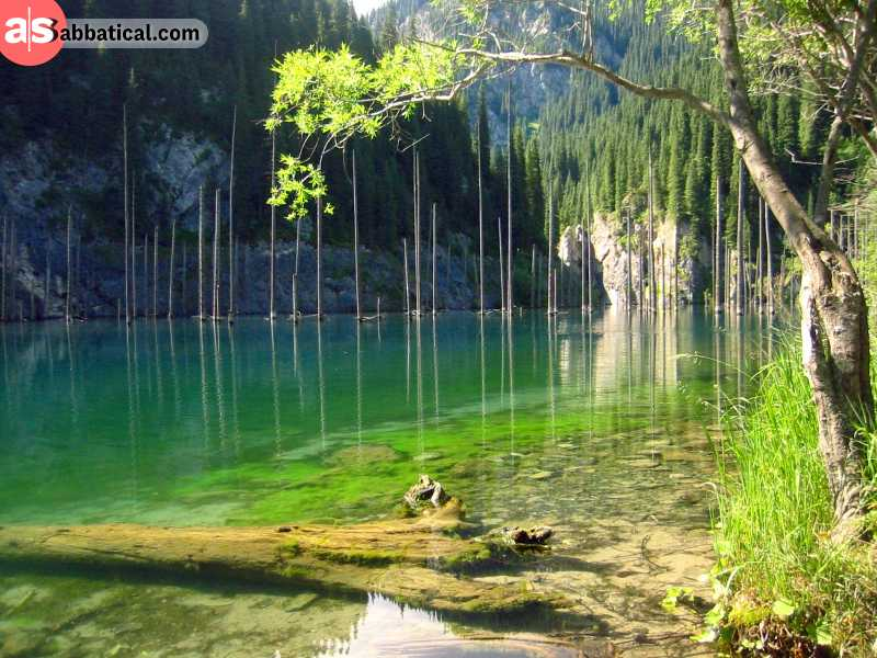 Kazakhstan is full of natural wonders, and Lake Kandy is truly magical with its sunken forest and turquoise water. Where is Kazakhstan, there is magnificent nature too!