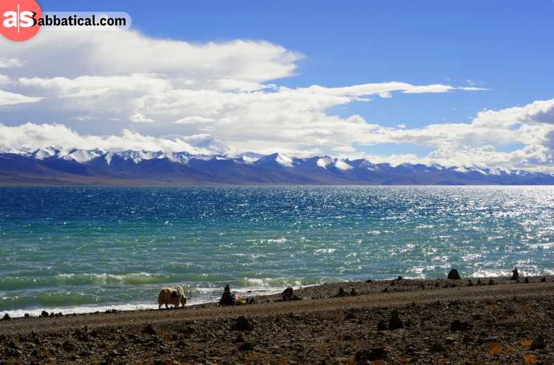 Namtso Lake is located at an altitude of about 5000 meters, which makes it the highest saltwater lake in the world.
