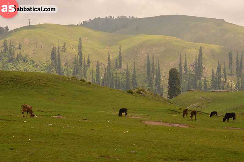 What are the best places to visit in Pakistan?