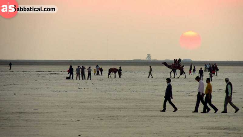 Riding a camel through the salt marsh of Rann of Kutch is an unforgettable experience!