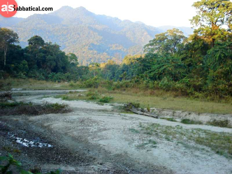 Royal Manas Nationnal Park is one of the oldest protected areas in Bhutan.