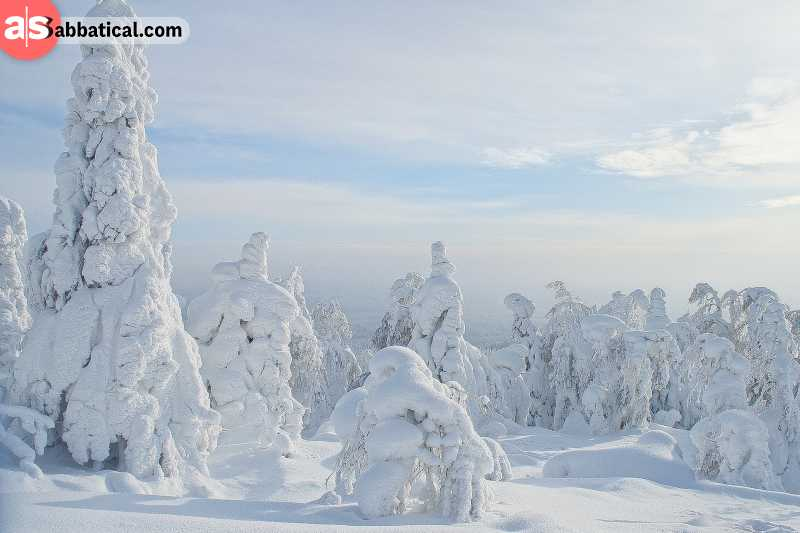 Russian winters are tough, but show the true natural beauty of Russia.