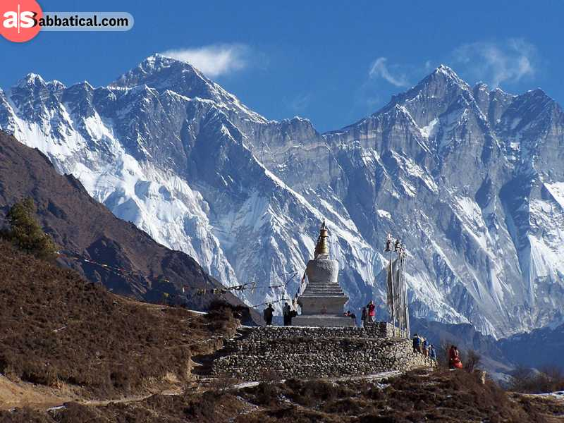 The flora and fauna of the Sagarmatha National Park is almost as diverse as the Tibetan culture.
