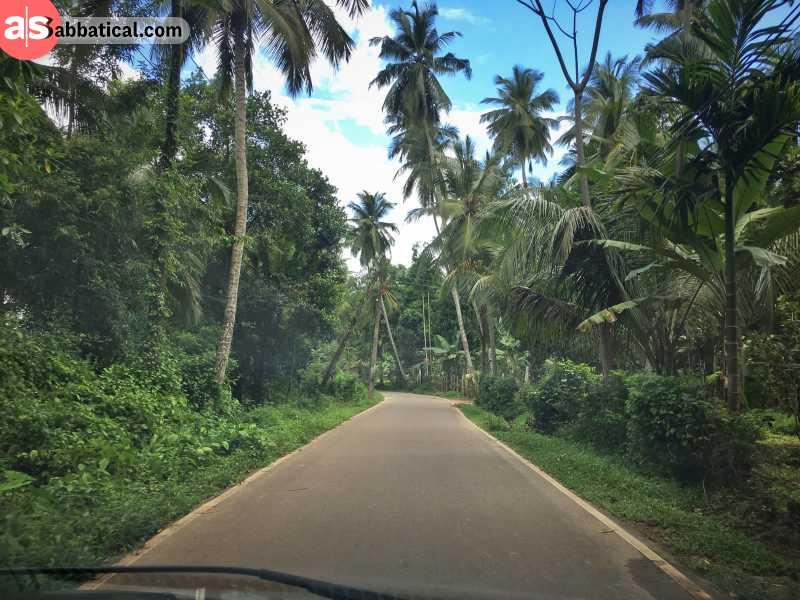 Doing a road trip in Sri Lanka will provide you with an authentic experience.
