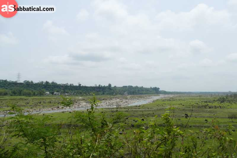 Terai region is the ideal agricultural region of Nepal.