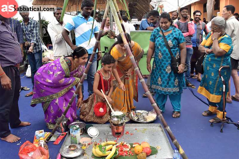 Thai Pongal is a harvest festivals in which people offer the Pongal dish to Sun God.