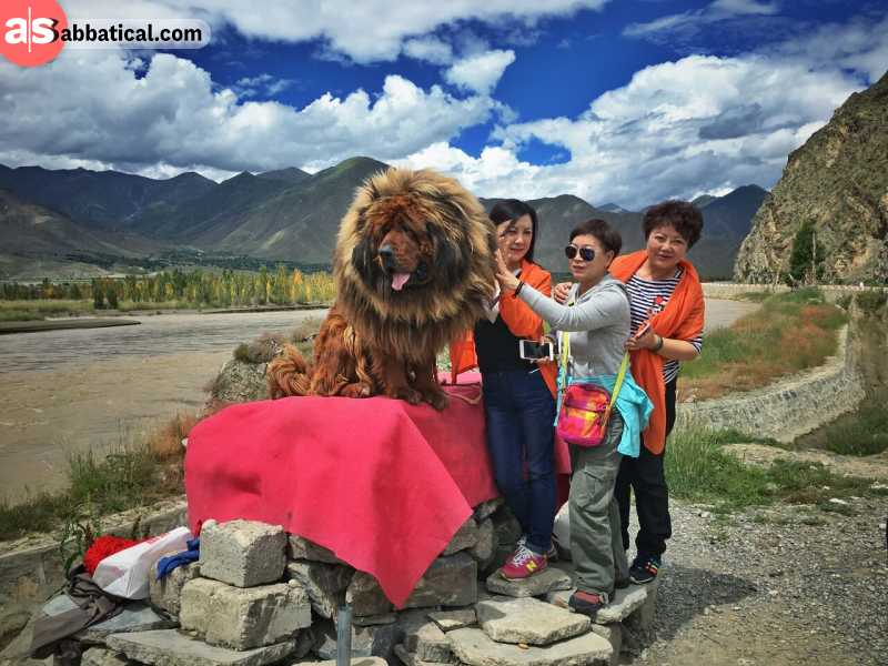 There is a wide variety of things to do in Tibet.