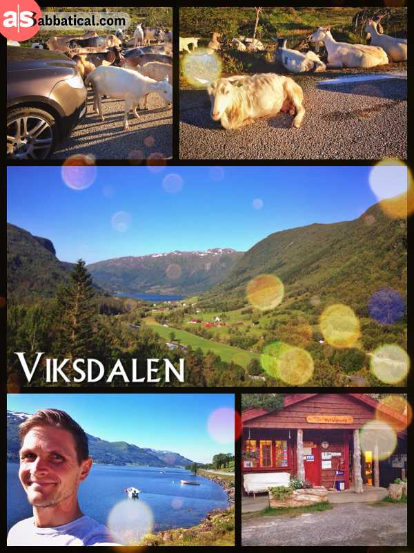 Viksdalen - exploring the vast and picturesque nature around the Norwegian fjords