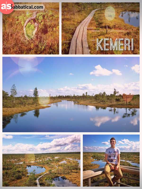 Kemeri National Park - beautiful wetlands and forests for a perfect afternoon hike