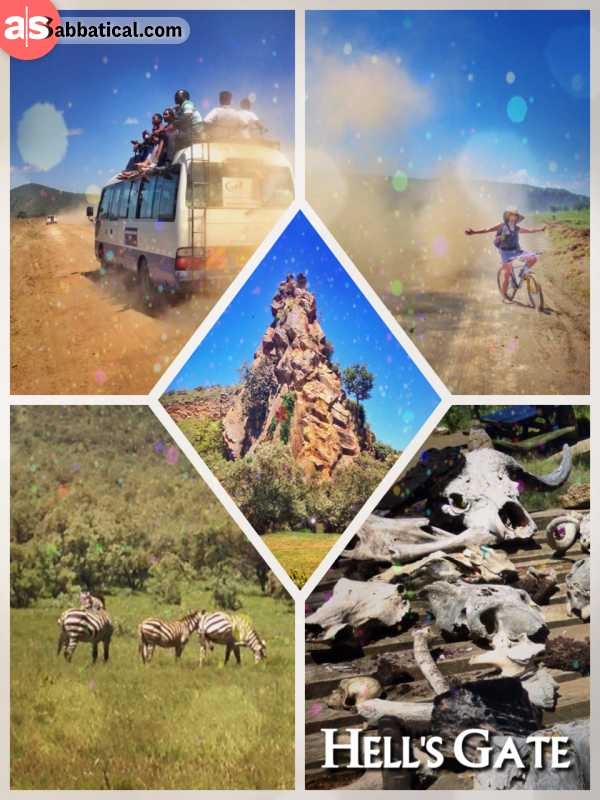 Hells Gate - riding a bicycle through a prehistoric lake and watching the grazing zebras