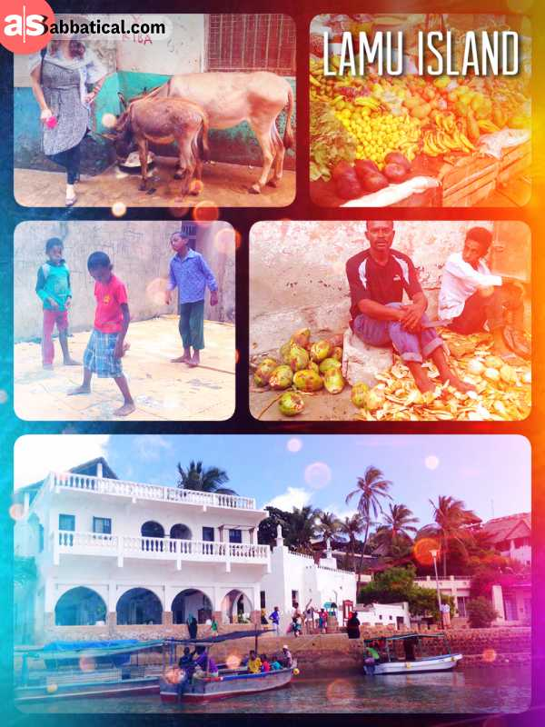 Lamu Island - exploring the Swahili island with lots of donkeys, but no cars during ramadan