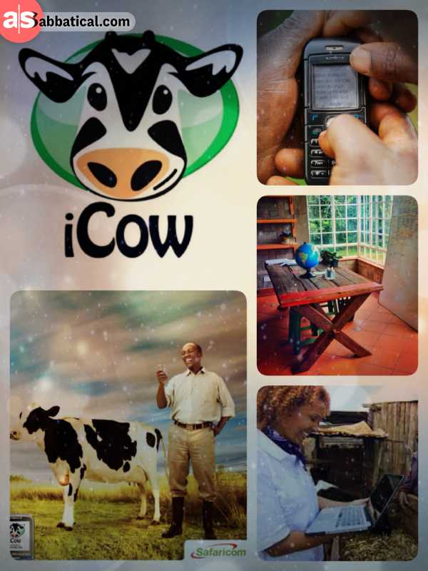 iCow - information service to educate and empower farmers using basic mobile phones