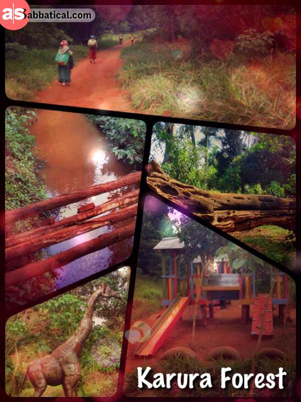 Karura Forest - having a walk and coffee in the urban forest - and nearly spending the full night