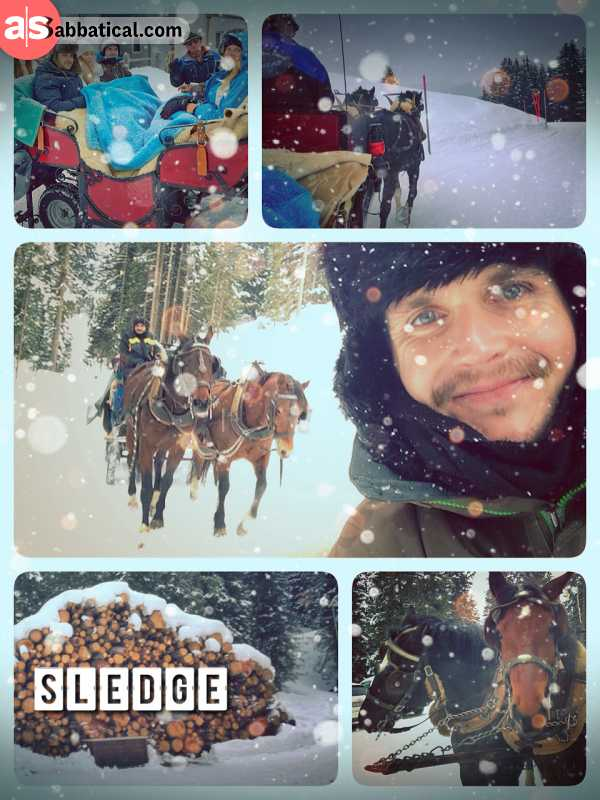 Horse Sleigh Rides - riding with my family on a cuddly sleigh through the white winter wonderland