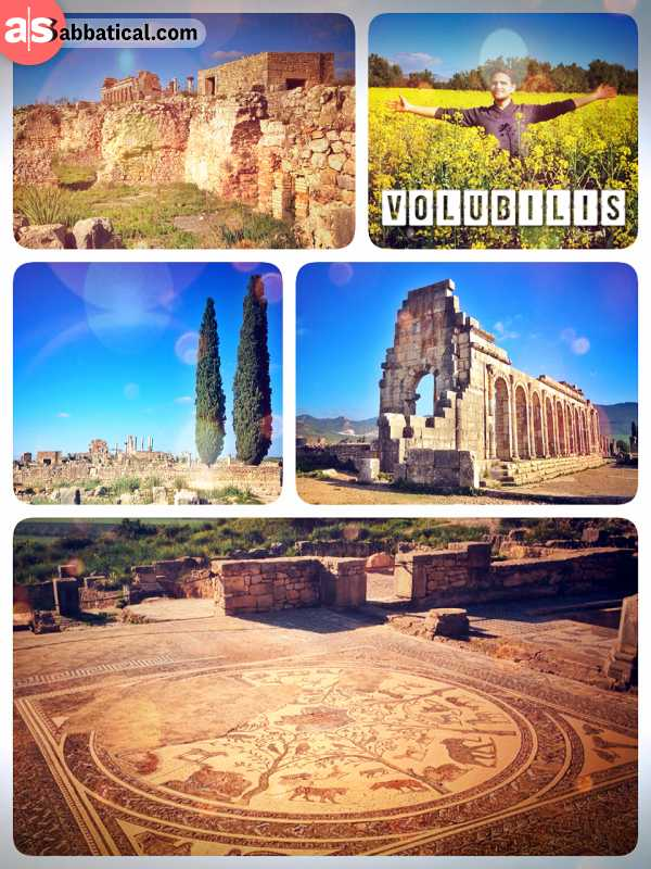 Volubilis - great daytrip from Meknes to the best preserved Roman Ruins on the African continent