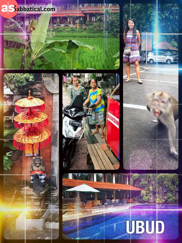 Ubud - getting a culture shock when reaching this touristic town on Bali island