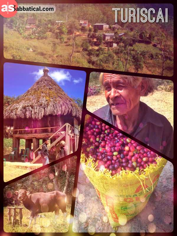 Turiscai - getting blessed by a shaman on the small island of Timor Leste