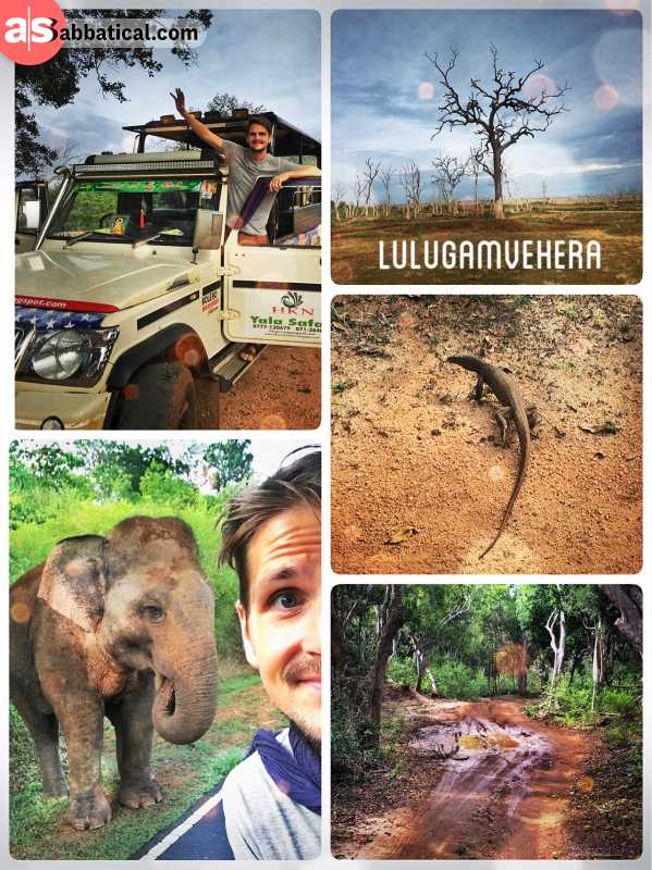 Lunugamvehera National Park - alternative to the famous Yala National Park and its leopards