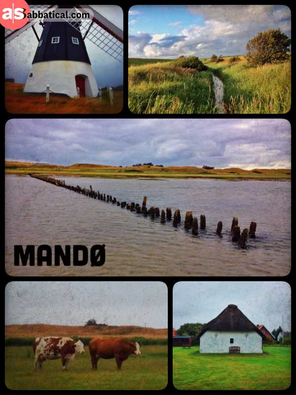 Mandø - hiking on a small and rainy island in the Wadden Sea of Denmark
