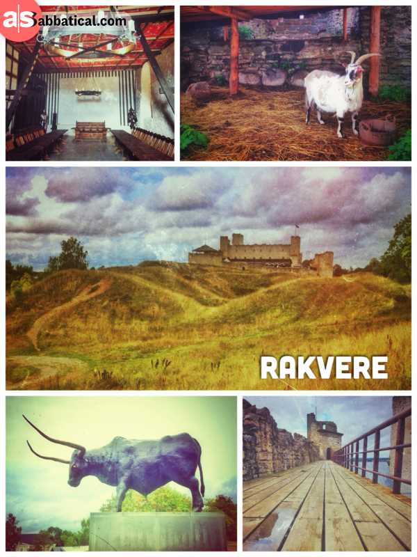 Rakvere Castle - large medieval castle in a small Estonian village