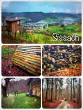 Sissach - hiking in the rainy hills of Sissach