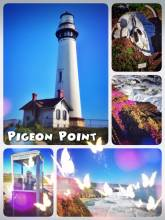 Pigeon Point Lighthouse - having a quick stop at the lighthouse on the ride to the south along the coast