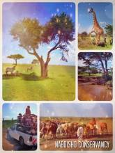 Naboisho Conservancy - more than just a glimpse preview of what to expect in the Masai Mara