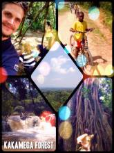 Kakamega National Park - cycling through the last tropical rain forest of Kenya and enjoying the canopy view