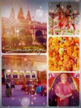 Satsang Swaminarayan Temple - learning more about Hinduism and religion thanks to a private tour through the Mandir