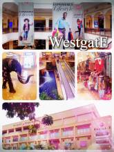 Westgate Mall - having lunch in one of the most prestigious and famous shopping malls of Kenya