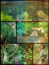 Kyambura Trekking - hiking along the river of the 160 km long gorge to find some Chimpanzees