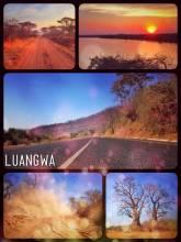 Luangwa River - spending one night at the Luangwa Bridge Camp before heading to the Lower Zambezi