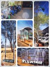 Plumtree (Zimbabwe > Botswana) - first immigration in Africa without a visa, but queuing behind a bus full of people