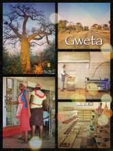Gweta - enjoying the magic of mighty baobab trees, but cannot find any petrol in town!