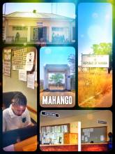 Mahango (Botswana > Namibia) - one of the fastest and easiest border crossings on the African continent yet