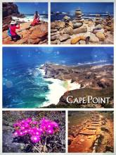 Cape Point - beautiful Nature Park with its highlight the most famous Cape of Good Hope