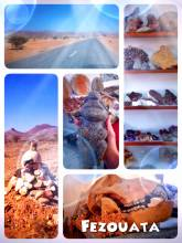 Fezouata - finding surprising fossils and other artefacts in a small souvenir store along the road