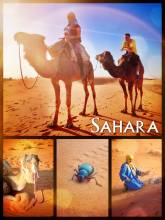 Sahara Camel Ride - crossing Morocco's largest sand desert Erg Chebbi on a slow camel back