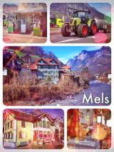 Mels - great location in Eastern Switzerland to quickly reach many major ski resorts