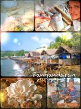 Pangandaran - visiting an uprising village of fishermen with lots of fresh fish to eat