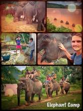 Elephant Camp - lovely place along the Mekong River to ride the grey animals