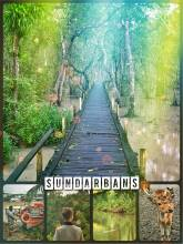Sundarbans -